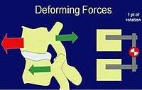 Deforming Forces